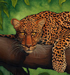 First Glance, original oil painting of an African leopard by Eugenia Talbott