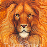 Boss, original oil painting of an African lion by Eugenia Talbott