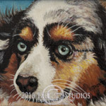 5 x 7 miniature oil on canvas, portrait of a Miniature Australian Shepherd, Nitro, beloved dog of Gloria and JR Rodriguez