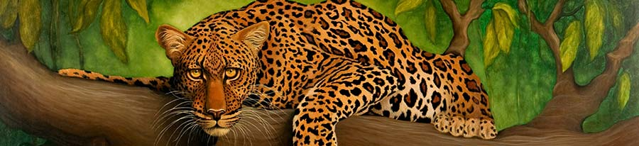 Detail image of Leopard, original oil painting by artist Eugenia Talbott
